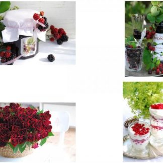 """Chic Antique 4 stk.Blomsterkort """"Passion"""""""